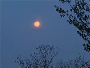 昨晚的月亮很漂亮