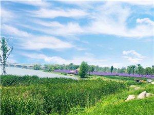 让我们一起欣赏美丽的风景吧!