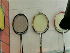 不忘初心之我的羽毛球的心路�v程(一)