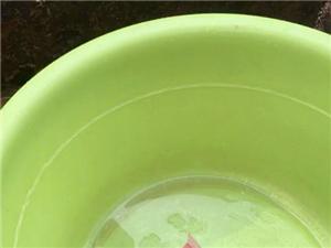 我想知道这样的水没人管不怕吃死人吗?