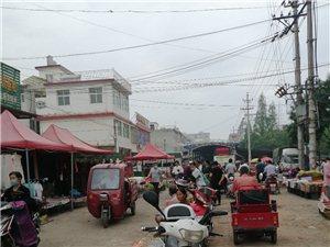 逸夫小学西边菜市场路中间摆摊,附近的居民出行很不便,己多次向阳光村务反映,至今没有解决,望有关部门管