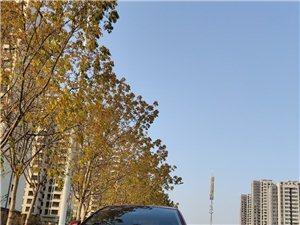 长城腾翼C30 2013款 1.5L