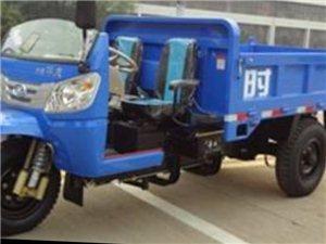 求购柴油自卸三轮车