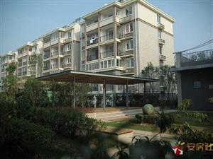 紫鑫花园3室2厅1卫35万元