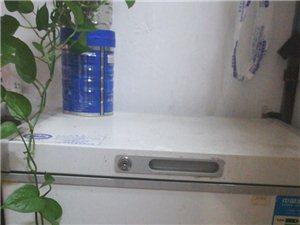 100升二手冷柜和液化气罐。390元
