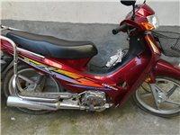 现有隆鑫110出售(九成新)才跑4000公里,价钱500元,不能过户,有意者电联。