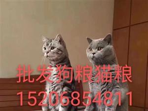 批发狗粮猫粮各种宠物狗猫