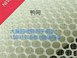 大量回收���W子~滴灌�А�大棚�窗防�x�W~�蚱�W~大棚塑料布