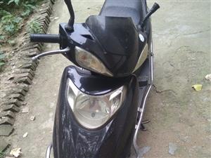 五羊本田雅閣踏板買時6000多摩托車,跑了5000多公里。現價1200元賤賣。