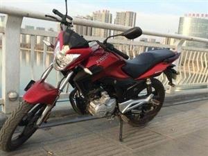 低�r出售宗申比���塘_�e�d125�T士摩托�! ��人一手�,1.5�f公里,代步用,因�e置�F欲�⑵涑鍪�。