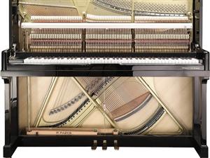 平輿縣城,上河城好萊塢環球影城一樓大廳,黑白鍵鋼琴品鑒店