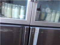 酸奶技术。免费培训。提供技术支持。免费品尝!