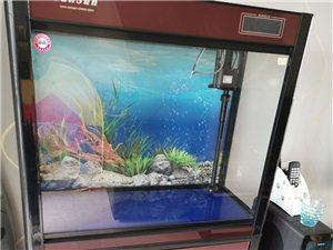 森森鱼缸水族箱带柜子,9成新,含柜子长宽高80*36*146cm,带可变三色灯管和触控温度显示屏,送...