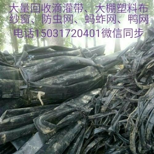 高價大量回收滴灌帶~鴨網子~大棚紗窗~泵管~螞蚱網
