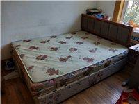 出售二手双人床  给钱就卖
