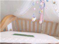 99成新的婴儿床外加一张棕垫,买来用了不到一年因没地方放,忍痛割爱转让