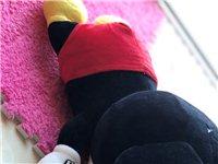 3个布娃娃。熊比较大,因各种原因。便宜买啦。希望喜欢的朋友,欢迎出价