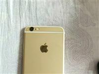蘋果6  16G 9.6新 無毛病 換新機 閑置果6  需要加微 手機號就是