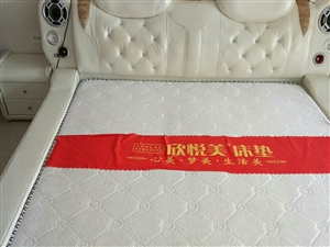 八成新皮床出售,新床�I�r光床�|都2000多,�F因搬家欲�理掉,�r格面�h!