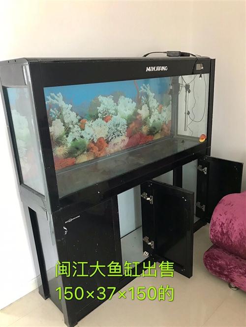 二手魚缸,閩江大牌子的,150×37×150的,上過濾,閑置出售,誠信需要的可小議   13845...