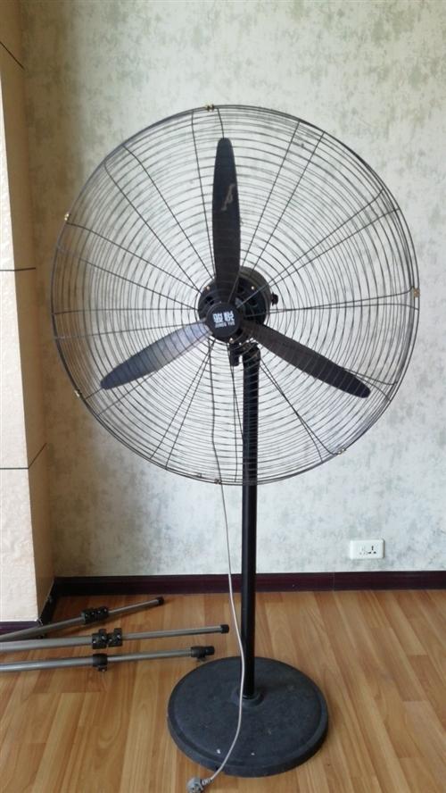 特大號風扇  夏天用處多多,急低價出售!!!