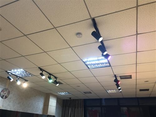 【7個中性光  2個暖光,各30瓦   】 紅 粉 綠 光 各12瓦, 低價處理,
