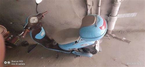電動車,比較適合女生,不過也可以坐兩個人,有一個鏡子掉了,價格可商量。自行車280買的,適合學生,騎...