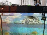 魚缸,長1.26,高60寬45,帶柜子一整套  1500 銀龍一條,買浴缸送銀龍