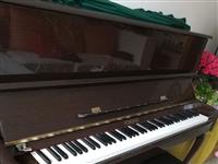 本人有闲置钢琴一台,保养极佳,有需要的联系我