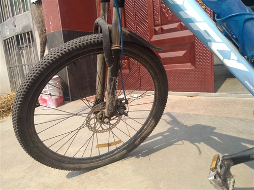 DTFLY低碳飛行自行車,兩年多,正常上下學用的,因孩子上大學低價轉讓700