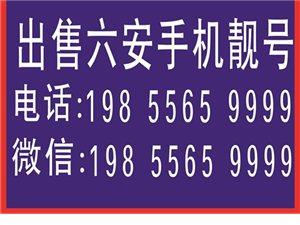 201910月���c大促�N六安手�C�n� 18205640000[�t包]36800 13205640...