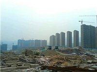 福建工地建筑料場常年大量出售并回收:模板破碎木片,拆遷棄柴破碎木片。無破碎-廢舊模板,棄舊竹膠板,拆...