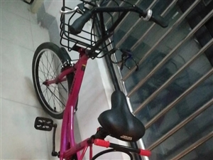 今年买的永久自行车  ,买来带孩子出去玩的,无奈人懒骑不动,含座?#25105;黄?#20986;了,原价560,便宜出260...
