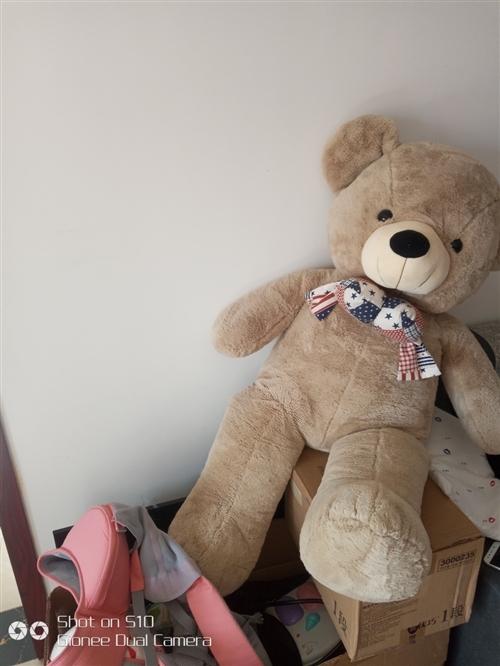 大熊娃娃 299現價99元