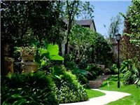 无极人的后花园,均价2800 水系洋房联系电话14730661886