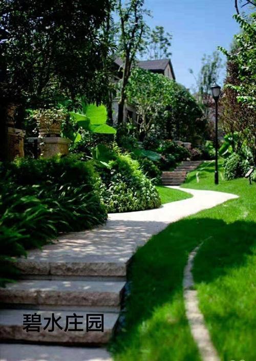無極人的后花園,均價2800 水系洋房聯系電話14730661886