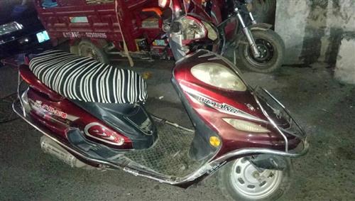 出售五羊摩托車一輛,無手續不能上牌,車況良好,沒裝電瓶,一踩就著,車聲小,線路燈光無問題,價格可商量...