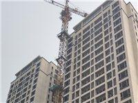 出售塔吊,型號匯東5010,標節13節,2011年購買,現在富順。