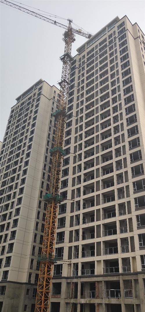 出售塔吊,型号汇东5010,标节13节,2011年购买,现在黑龙江快三app软件—主页-彩经_彩喜欢顺。