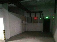 高唐縣水韻華城小區地下車位,靠近進出口,有電源,車庫的便利,車位的價格。