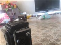 海鷗照相機