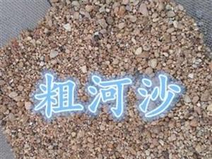 白露河大粗沙,自�a自�N