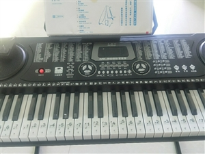 电子琴、灯光交替! 售价320! 东方八所