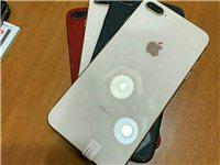 蘋果8p 64g 電池效率不錯  二手靚機 99新 配合卡貼全網通4g 1850 vx:fei18...