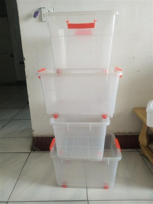 塑料分类箱10元一个!熟胶的非常结实耐用!
