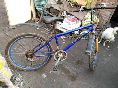 出售变速自行车一辆成色好价格美丽有意者联系15732831896