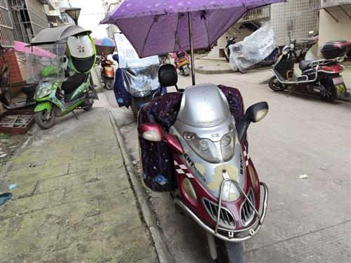 燒油踏板摩托車,家用代步車,有意者電話13550983673非城勿擾。