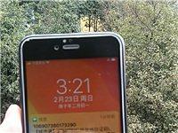 低價出售自用二手蘋果6S手機 性能完好 八成新 64G 價格650元 聯系電話18166906974...