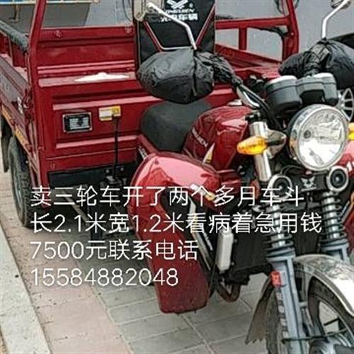三轮150发动机摩托车车斗长2.1米宽1.2米能过户买到手开了两个月看病急用钱才卖