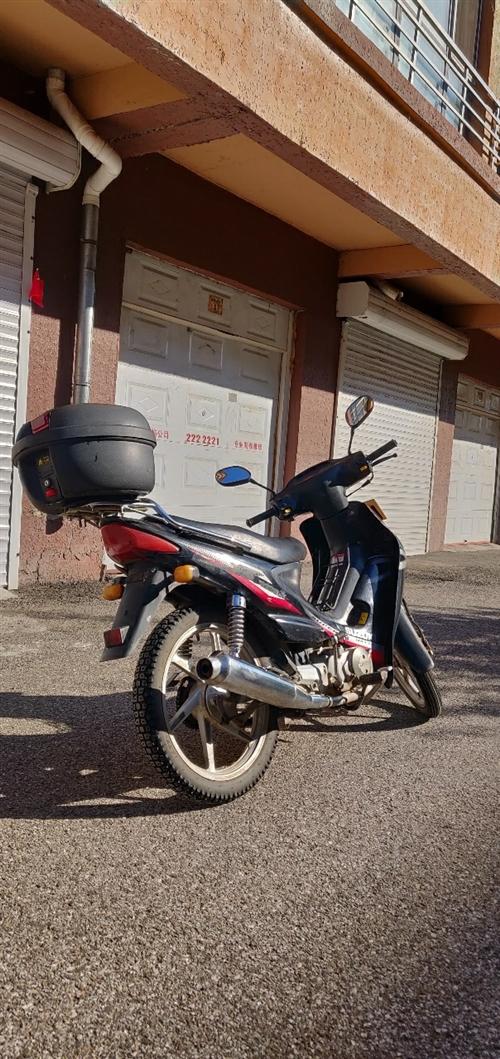 铃木弯梁摩托车,公里数13642,无事故,超级省油